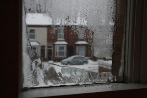 The bedroom window this morning